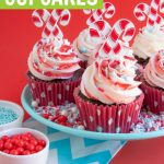 plate of chocolate peppermint cupcakes with peppermint frosting