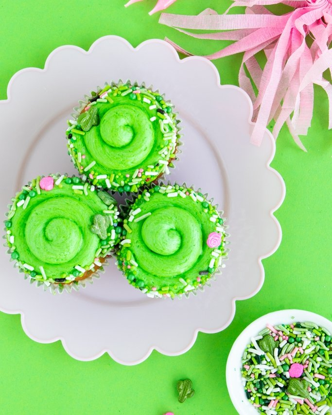 Cactus party cupcakes on white place on green background