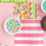 Donut Party Supplies Graphic