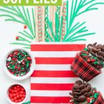 buffalo plaid cupcakes and lumberjack party supplies collage