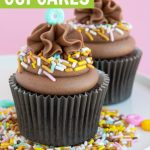 Mocha cupcakes recipe graphic
