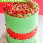 sprinkle fault line cake tutorial graphic