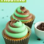two tone swirl frosting tutorial - chocolate mint frosting graphic